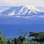 Mt Kilimanjaro Hike and Safari